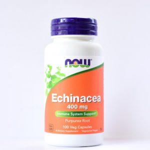 echinacea now